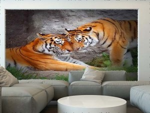 Tiger's Couple