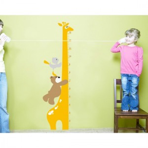 Giraffe Scale With Teddy