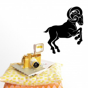 Aries Vinyl Wall Sticker