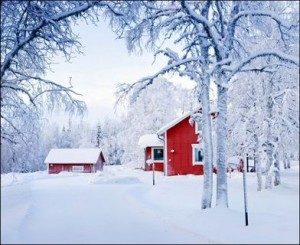 Red House in Fairy Forest