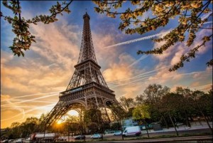 Eiffel Tower With Spring Tree