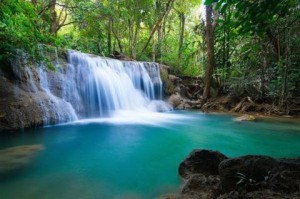 Forest Waterfall,Thailand