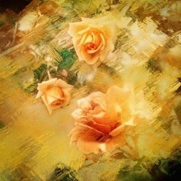 Painted Roses Background