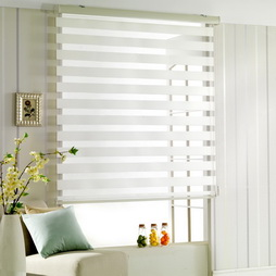 windowblinds2
